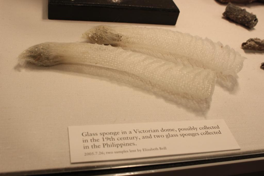 Corning Museum of Glass New York 5
